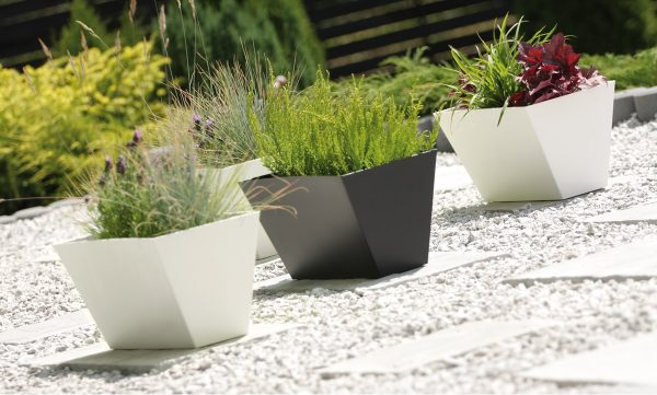 Beton Modern Planter fits perfectly into your modern interior and adds a great oomph to your yard and balcony either. Its regular geometric shape stands out in your interior and exterior.